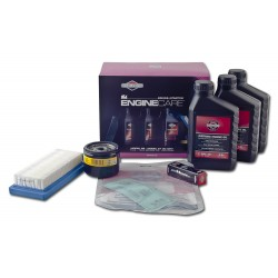 992238 Kit entretien Briggs&Stratton Model 28, 31 I/C